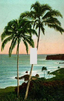 Palm Tree Lighting front-425969