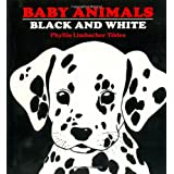 Baby Animals Black and White: Black and White ~ Phyllis Limbacher Tildes