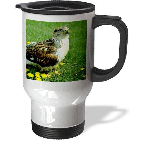 tm_677 Wild animals - Feruginous Hawk - Travel Mug термокружка emsa travel mug 360 мл 513351