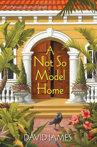 Image of A Not So Model Home (Amanda Thorne Mystery)