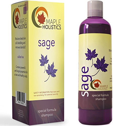 Maple Holistics Sage Shampoo for Anti Dandruff with Jojoba, Argan, and Organic Tea Tree Oil - Natural, Sulfate Free Treatment for Women and Men - Safe for Color Treated Hair ( 8 fl. oz.)