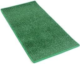 HEAVY TURF (15.5 Oz.) - 3\'x10\' Artificial Grass Carpet Indoor / Outdoor Area Rug. 5/16\