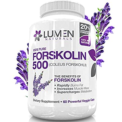 "Forskolin 500mg 2X Strength 20% Standardized - Get the ""Insta Belly Melt"" - 100% Pure Coleus Forskohlii Extract - Clinically Proven Ingredients Shown to Rapidly Burn Visceral, Leaving Lean Muscle Behind - Forskolin for Weight Loss Melts Fat & Supercharges"