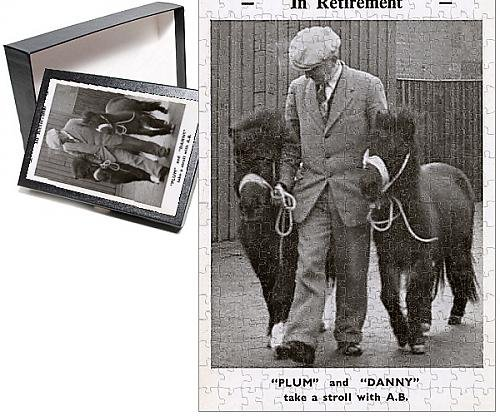 photo-jigsaw-puzzle-of-pit-ponies-in-retirement-plum-a-danny