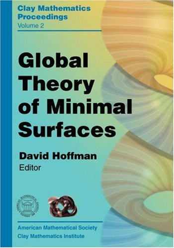 Global Theory Of Minimal Surfaces