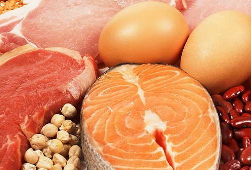 The Essential Guide to a High Protein Diet
