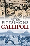 img - for Gallipoli book / textbook / text book