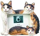 E&S Pets 35297-2 Large Cat Frames