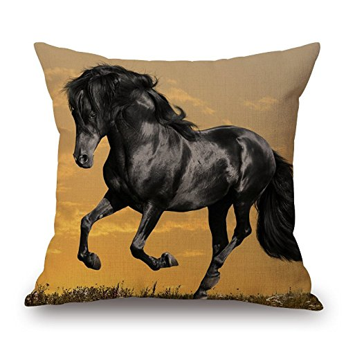Horse Cushion Covers 18 X 18 Inches / 45 By 45 Cm Best Choice For Relatives,teens,divan,play Room,couples,adults With Twice Sides