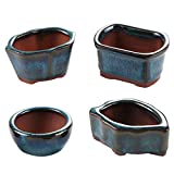 Happy Bonsai 4 Mini Glazed Pots / Small Succulent Plant Flower Planters