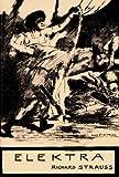 Elektra, Libretto