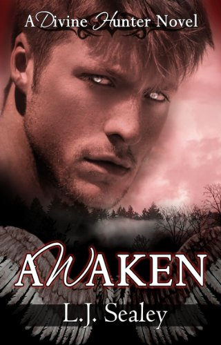 Awaken by L.j. Sealey ebook deal