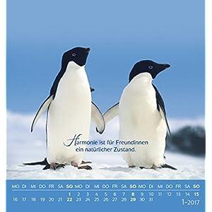 Für meine Freundin 2017: aufstellbarer Postkartenkalender