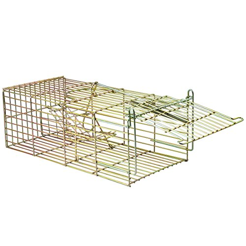 generic-dyhp-a10-code-4615-class-1-control-no-veneno-catcher-plagas-t-con-nueva-rata-raton-e-anima-d