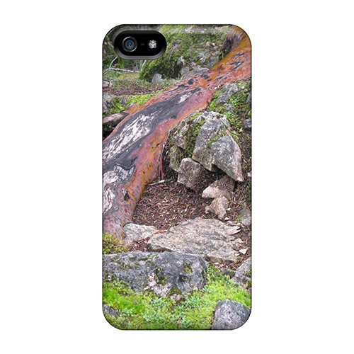 Hot Snap-On British Columbia Vancouver Isl Forest Hard Cover Case/ Protective Case For Iphone 5/5S front-739274