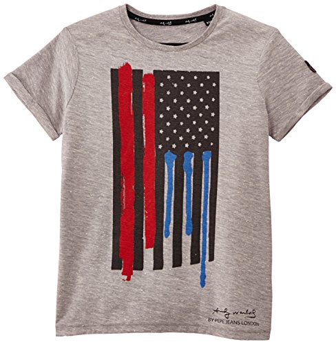 Pepe Jeans Jungen T-Shirt, Shot, GR. 176 (Herstellergröße: 16 ans) grau (Grey Marl)