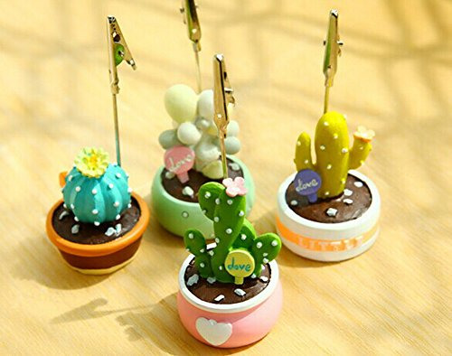 Succulents Message Clip Notes Folder Card Seat Seat Decoration Picture-Yellow T