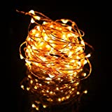 HDE Waterproof LED Fairy String Lights Flexible Copper Wire Starry Rope Dorm Room Lights with AC Adapter (Warm White)