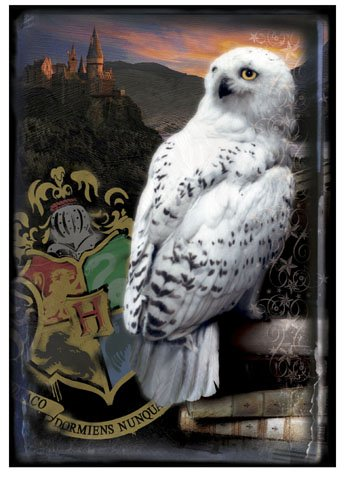 "Cheap Neca Harry Potter HBP Puzzle ""Hogwarts and Hedwig"" (B0029UL8A0)"