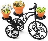 1/24 triciclo Hierro y maceta