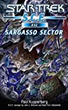 Star Trek: Sargasso Sector (Star Trek: Starfleet Corps of Engineers Book 42)