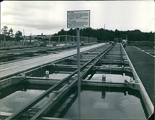 vintage-photo-of-1956salmon-1957boxes-for-fingerling-in-fish-farming-shown-in-abovepisciculture