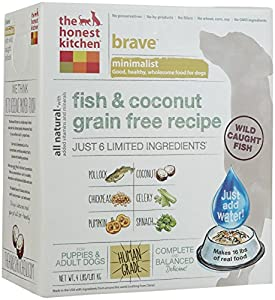 The Honest Kitchen Brave: Fish & Coconut Grain Free Dog Food, 4 lb