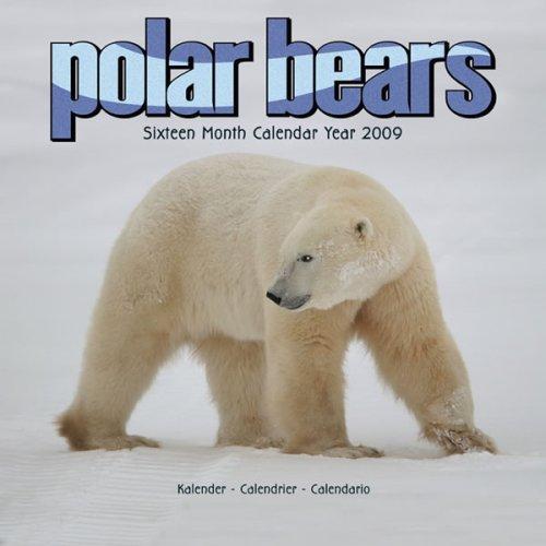 2009 Polar Bears Wall Calendar