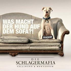 Erbrochenes auf sofa