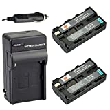 DSTE? 2x NP-F550 Battery + DC01 Travel and Car Charger Adapter for Sony CCD-RV100 CCD-RV200 CCD-SC5 CCD-SC9 CCD-TR1 CCD-TR215 CCD-TR940 CCD-TR917 Camera as NP-F330 NP-F530 NP-F570