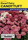 Lake Valley 65 Candytuft Dwarf Fairy Mix Seed Packet
