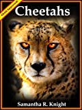 Cheetahs: Awesome Photos and Fun Facts (A Little Intro to Animals And Nature Series)
