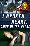 A Broken Heart: Cabin in the Woods: Book 1 (English Edition)