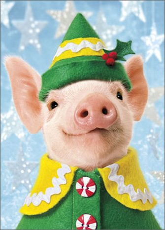 [Pig Elf Stand Out - Avanti Pop Up Christmas Card] (Elf Costume Made Out Of Felt)