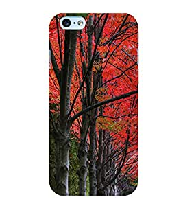 Beautiful Trees 3D Hard Polycarbonate Designer Back Case Cover for Apple iPhone 6S