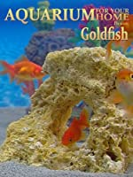 Goldfish Aquarium - A Goldfish tank for your home!