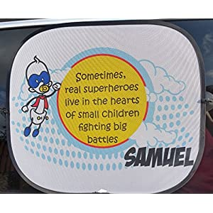 Superheores Live in the Hearts of Children Fighting Battles Personalised Car Sunshades - Raising Money for Bliss