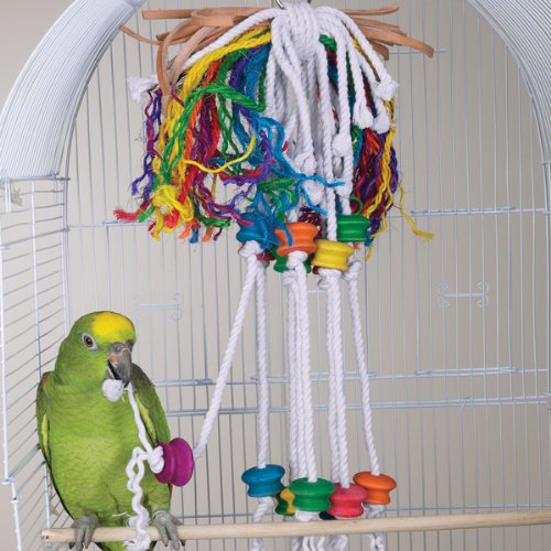BERSERK – Brainy Bird Wild Series Toys