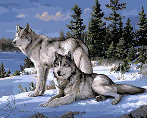 Paint By Number Kits No Blending / No Mixing Linen Canvas - Wolf King