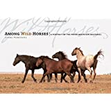 Among Wild Horses: A Portrait of the Pryor Mountain Mustangs