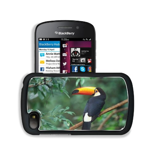Toucan Branch Tree Bird Beak Blackberry Sqn100 Q10 Snap Cover Premium Aluminium Design Back Plate Case Customized Made To Order Support Ready 4 13/16 Inch (123Mm) X 2 12/16 Inch (70Mm) X 8/16 Inch (13Mm) Liil Q10 Professional Metal Cases Touch Accessories