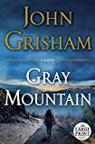 Gray Mountain: A Novel (Random House Large Print)