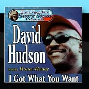 David Hudson - Honey Honey / Come On Back Baby