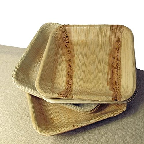 Disposable Eco Palm Paper Bowls Compostable Biodegradable Heavy Duty Small Soup Salad Hors D\u0027oeuvres Appetizer \u0026 Dessert Party Bowl \u2013 Comparable to Bamboo ...  sc 1 st  Compostable Plates & Disposable Eco Palm Paper Bowls: Compostable Biodegradable Heavy ...