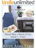 Amish Knit & Stitch Circle ~ Book 1 ~ A Knot (Smicksburg Tales 4 Series) (English Edition)