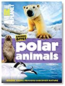 Animal Planet Polar Animals (Animal Bites Series)