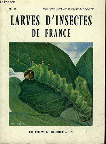 atlas-des-larves-dinsectes-de-france-vers-blancs-chenilles-asticots