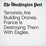 Terrorists Are Building Drones. France Is Destroying Them With Eagles. | Avi Selk