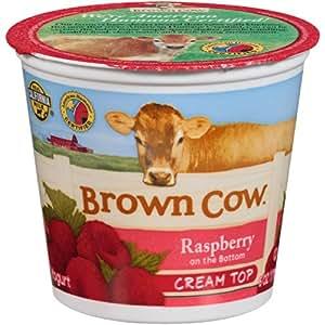 Brown Cow Chocolate Yogurt Review
