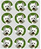 12 Dog Westie rice paper fairy / cup cake 40mm toppers pre cut decoration